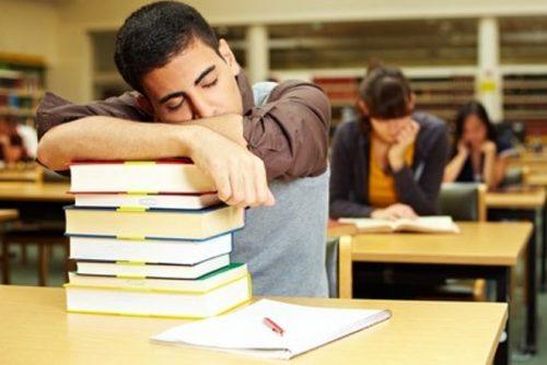 lộ trình học tiếng Anh cho sinh viên năm nhất 1
