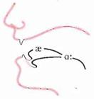 phát âm nguyên âm dài 6
