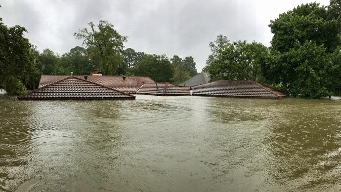 Lũ lụt - Từ vựng về thiên tai